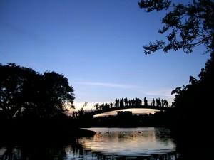 Parque do Ibirapuera atrai por sua beleza natural